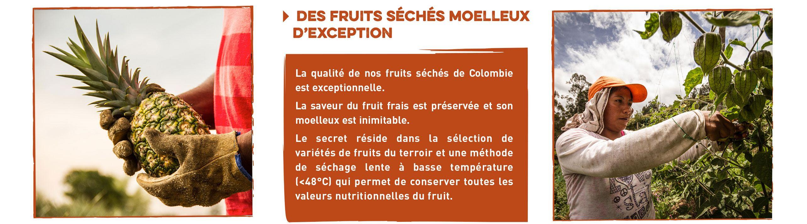 fruits séchés bio et équitables