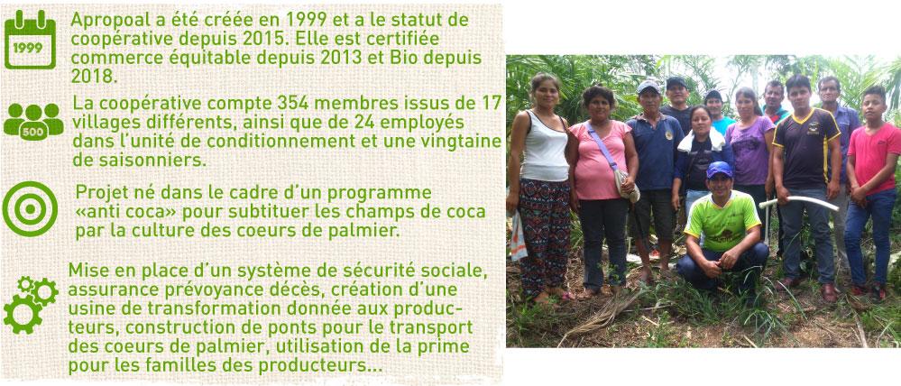 producteur coeurs de palmier commerce equitable