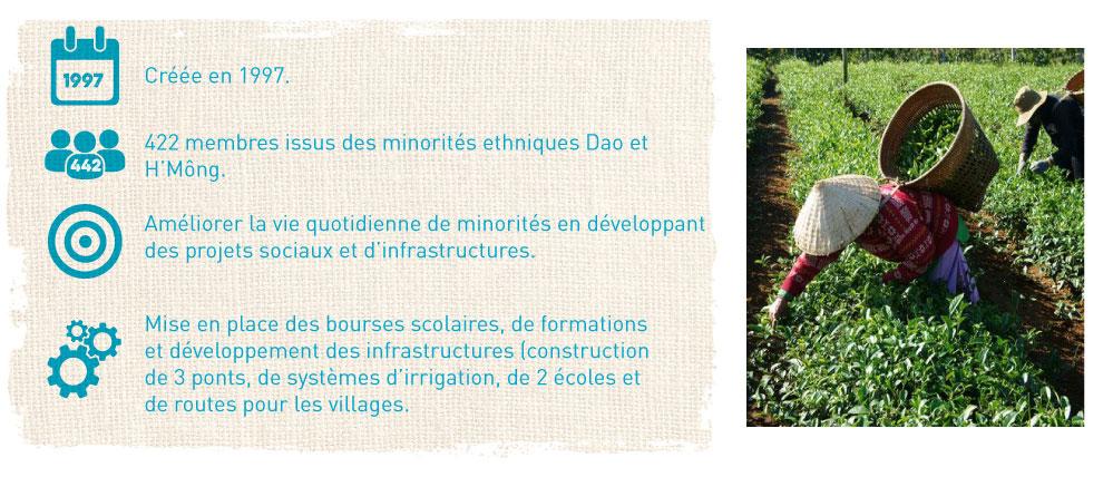 producteurs de thé bio et équitable