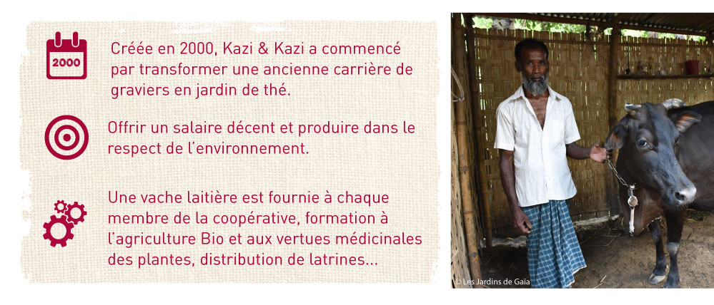 kazi kazi producteurs de the bio equitable
