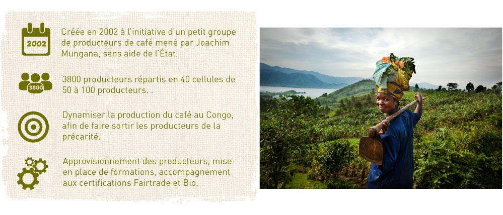 cooperative cafe bio commerce equitable congo