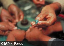 CIAP : Artisans du Pérou du Commerce Equitable