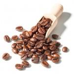 cafe grains mexique equitable