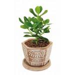 Planteur hexagonal céramique