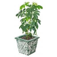 Planteur Motifs Bambou