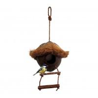 nichoir oiseau noix de coco