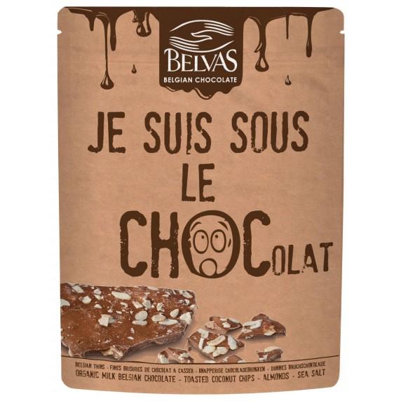 brisures chocolat lait bio